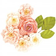 Blommor Prima 9 st - Pink Lacy