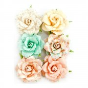Blommor Prima 6 st - Heaven Sent 2 Flowers - Evelyn