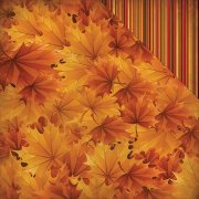 Papper Reminisce - Best Of Harvest - Copper Colors