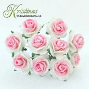 Mulberry Rose - 20 mm - White / Cerise