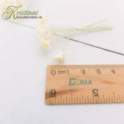 Mulberry Blommor Kristinas Scrapbooking Babys Breath