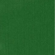 Cardstock Bazzill - Canvas - Classic Green
