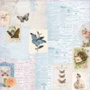 Papper ScrapBerrys - Butterflies - Beauty