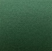 Cardstock Canvas - Green