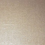 Cardstock Reprint - Canvas - Pearl Champagne