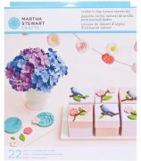 Martha Stewart Clay Nature Starter Kit