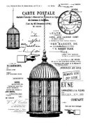Clearstamps 13 Arts - The Cage - Rosalie