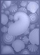 Crafter's Companion 3D Embossing Folder - Nautical Seashell Medley