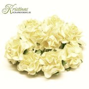 Mulberry Curly Rose - 25 mm - Creme 10 st