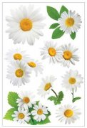3D Stickers Glitter - Oxeye Daisies - Paper House