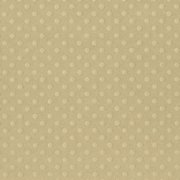 Bazzill Dotted Swiss Cardstock - Mud Puddle Trio - Rope Swing