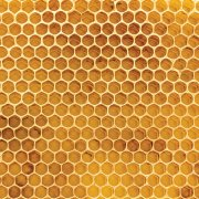 Papper - Ella & Viv - 100% Natural - Honeycomb