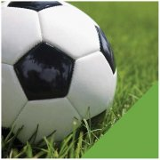 Papper American Crafts - Sport - Soccer Ball Photo