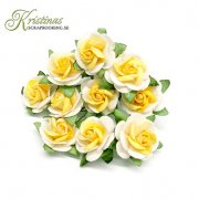 Mulberry Rose - 10 mm - Yellow / Off White