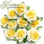Mulberry Rose - 20 mm - Yellow / Off White