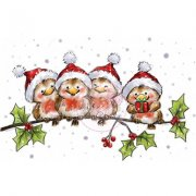 Clearstamps - Wild Rose Studio - Robins On Branch