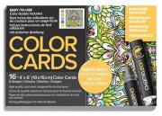 Chameleon Color Cards - Embossed Lines - 10x15 - Mirror Images