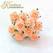 Mulberry Rose - 10 mm - Peach