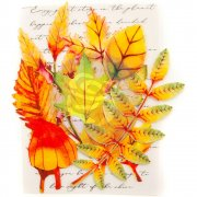Prima Embellishments Blad - Autumn Maple