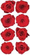 Stickers Sticko - Red Roses