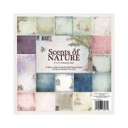 Paper Pad Scents Of Nature - 6x6 - 49 and Market
