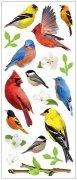 3D Stickers Glitter - Backyard Birds - Paper House