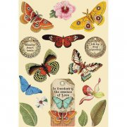 Wooden Die Cuts Stamperia - Amazonia - Butterfly