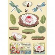 Wooden Die Cuts Stamperia - Amazonia - Water Lily