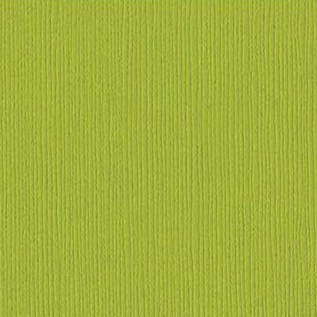 Cardstock Bazzill - Canvas - Sour Apple