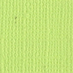 Cardstock Bazzill - Canvas - Limeade