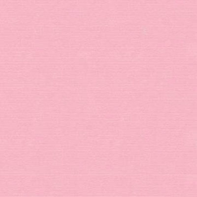 Cardstock - Berry Blush