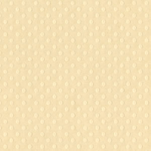 Bazzill Dotted Swiss Cardstock - Mud Puddle Trio - Sandbox